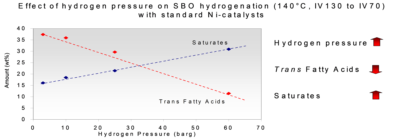 Hydrogenation in Practice